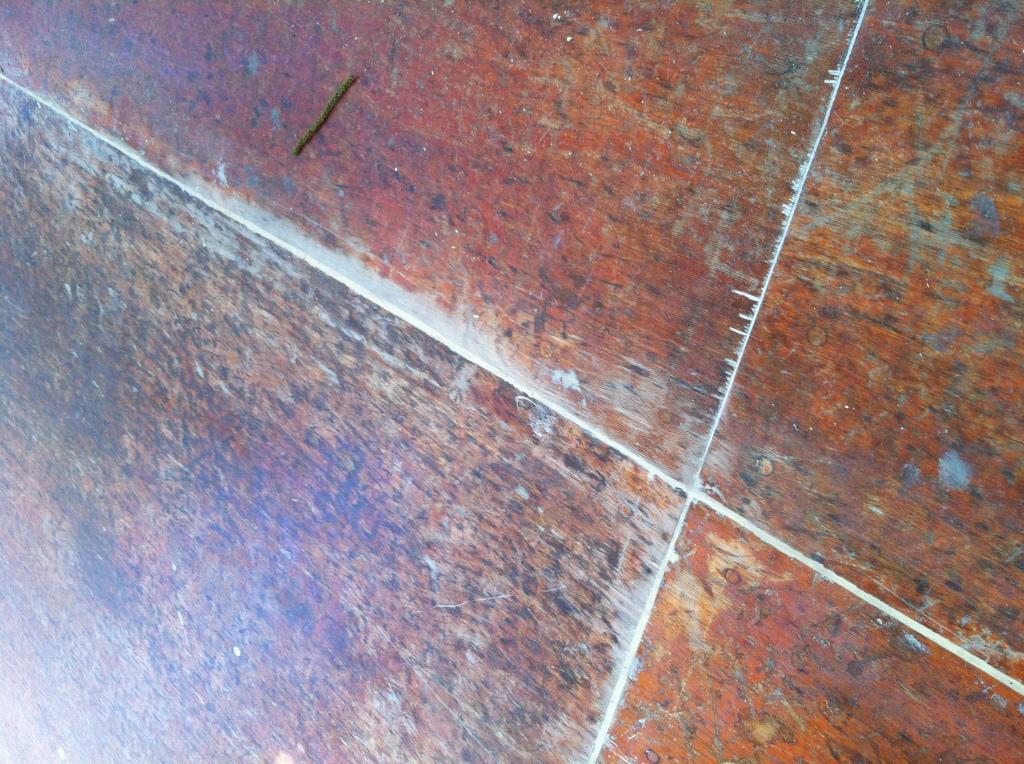 The studio floor was a free dance floor from craigslist